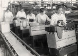 Citrus Packing House Workers