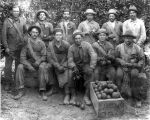 San Dimas Orange Growers Association Workers