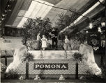Pomona Exhibit at the Tenth Annual California Valencia Show in Anaheim