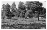 Log Cabins among the Pines Tomblers Lodge Mormon Lakes Arizona