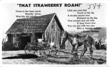 """That Strawberry Roan!"""