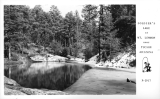 Soldier's Lake at Mt. Lemmon near Tucson Arizona