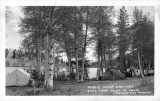 Public Camp Grounds Gull Lake Mono County California