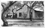 Main Bldg. San Coyetano Ranch, Disbrow Brothers, Tubac, Arizona