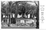 Pool Scene with Date Tree Setting Wonder Palms Hotel Palm Springs California