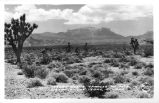 Desert Scene, Charleston Mts., in Distance, Las Vegas, Nevada