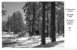 The Wonderland of Winter Big Bear Lake California