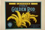Index Golden Rod