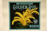 Mutual Golden Rod