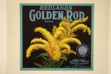 Redlands Golden Rod
