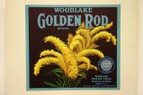 Woodlake Golden Rod