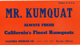 Mr. Kumquat