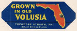 Grown in Old Volusia