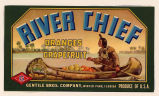 River Chief