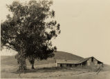 Carrion Adobe