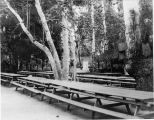 Ganesha Park Picnic Tables
