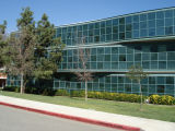3801 W. Temple Avenue - Cal Poly Pomona - Camphor Lane
